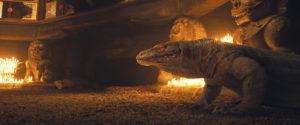After: Komodo Dragon